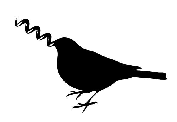oiseau tire bouche
