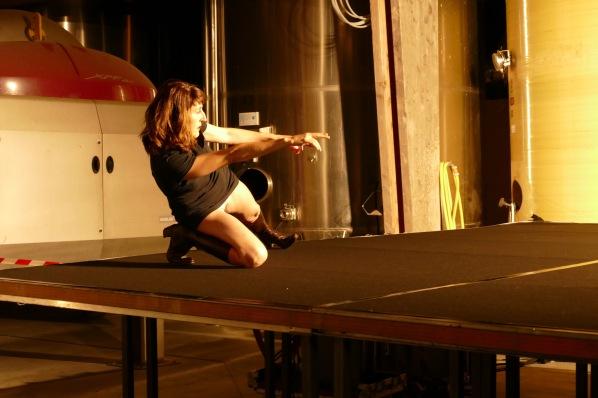 """Fanny de Chaillé """"Gonzo conférence"""" scène du Pressoir"""